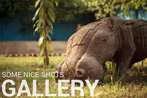 Gallery - somewhere nice Hostel Accra